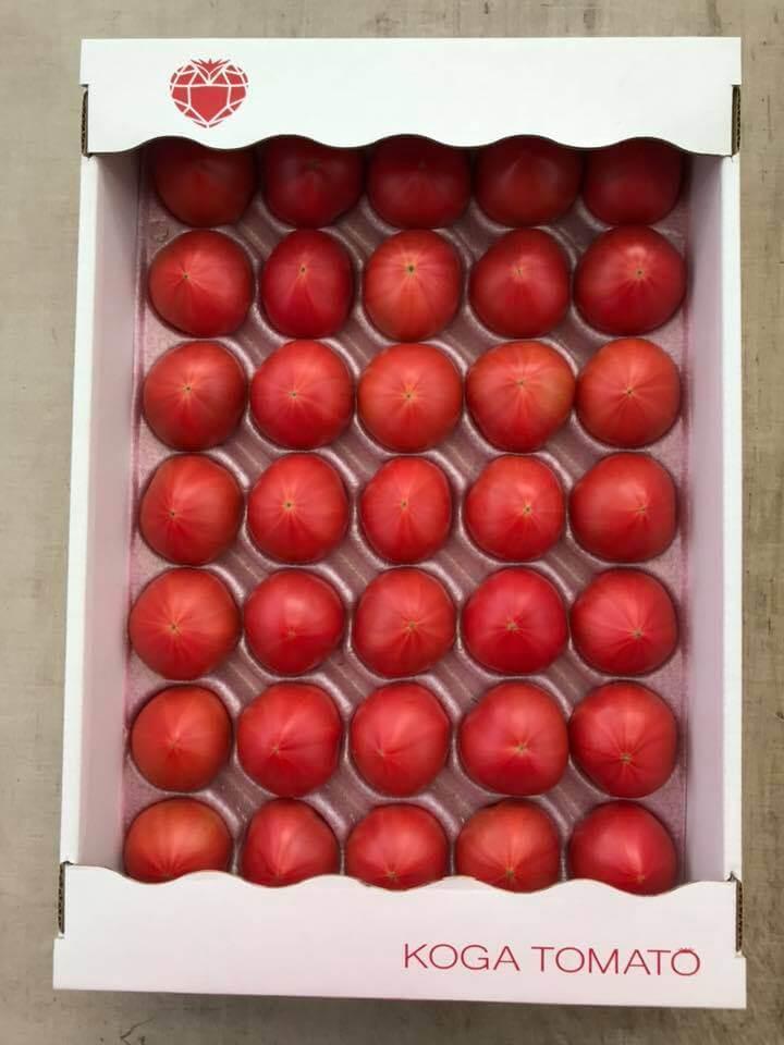 CRYSTAL RED 4kg箱