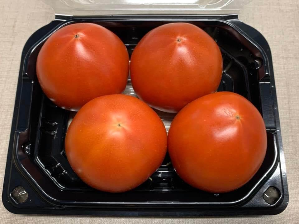 古賀とまと農園 トマト